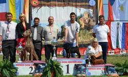 Црна Гора 29.08.2012